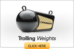 Trolling Weights