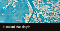 Standard Mapping®